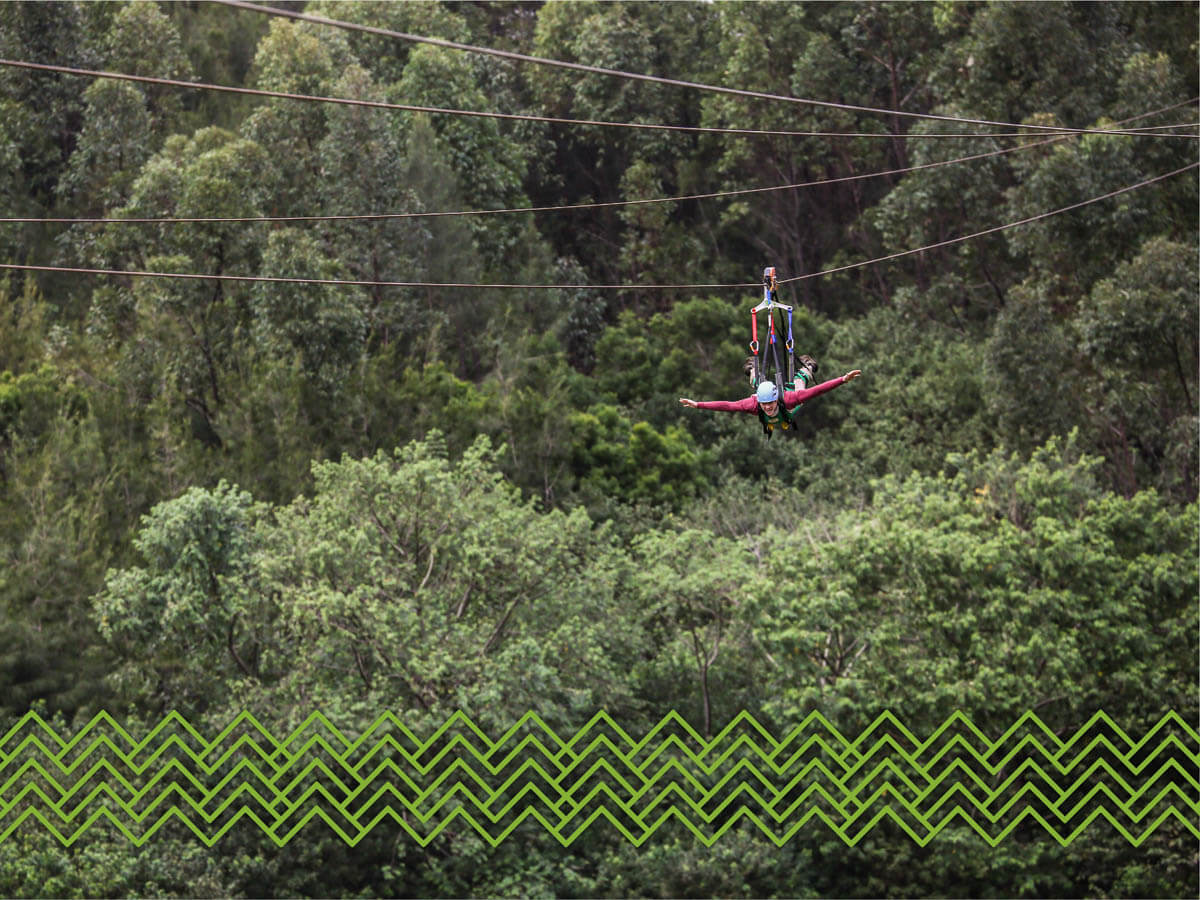 The Ziplines at Lanai Adventure Park with branding from iQ360